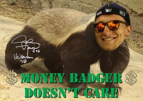 money badger doesnt care